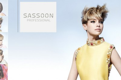 Vidal Sassoon Teaser Hair