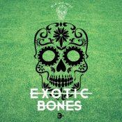 Exotic Bones 3 Compilation